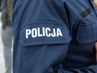 """Policjanci z Bolesławca zastrzelili psa? """"Gdy funkcjonariusze weszli na..."""