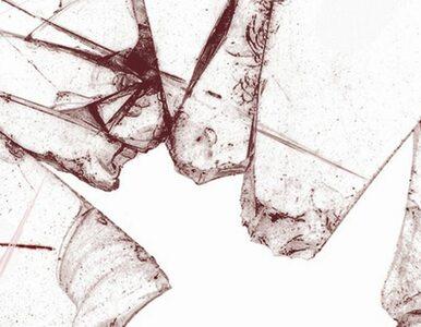 Morderstwo przy Starym Browarze. Narzędziem zbrodni była butelka, nie nóż