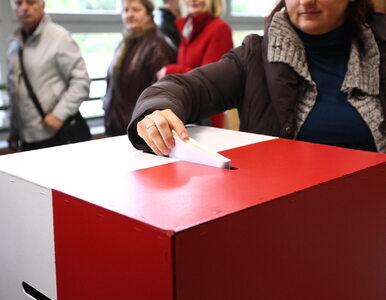 Sondaż: Wyższa frekwencja w wyborach pozbawiłaby PiS samodzielnych rządów