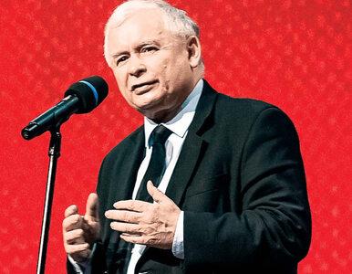 PiS złożył kolejne wnioski o ponowne przeliczenie głosów. Chodzi o...