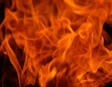 Dwóch nastolatków podpaliło bezdomnego. Zatrzymała ich policja