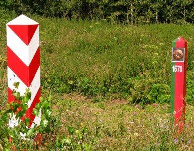Zatrzymania na granicy. Białoruś: Polacy kabotowali