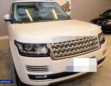 Policjanci CBŚP rozbili gang złodziei samochodów. 51 osób zatrzymanych
