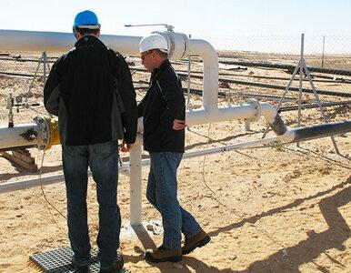 Serinus Energy: wznowienie produkcji w Tunezji na polu Sabria
