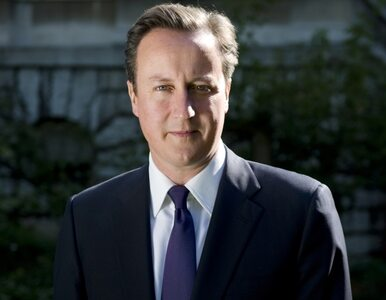Cameron nie poleci do Moskwy