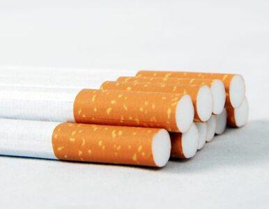 Palenie będzie droższe