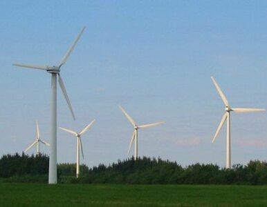 Gigawat zielonej energii z polskich elektrowni wiatrowych