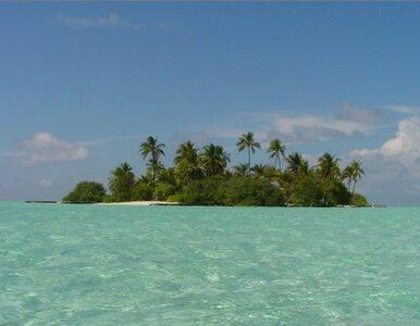2,5 tys. euro za pracę na malowniczej wyspie