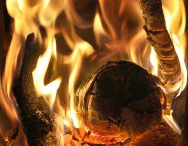 Węgrzy ogrzewają się paląc... banknoty