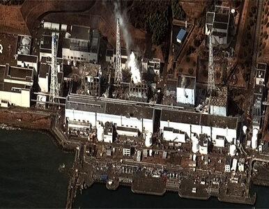 Śmierć w Fukushimie