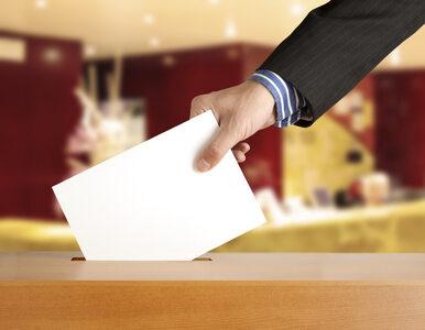 USA: Dane osobowe wyborców dostępne w internecie