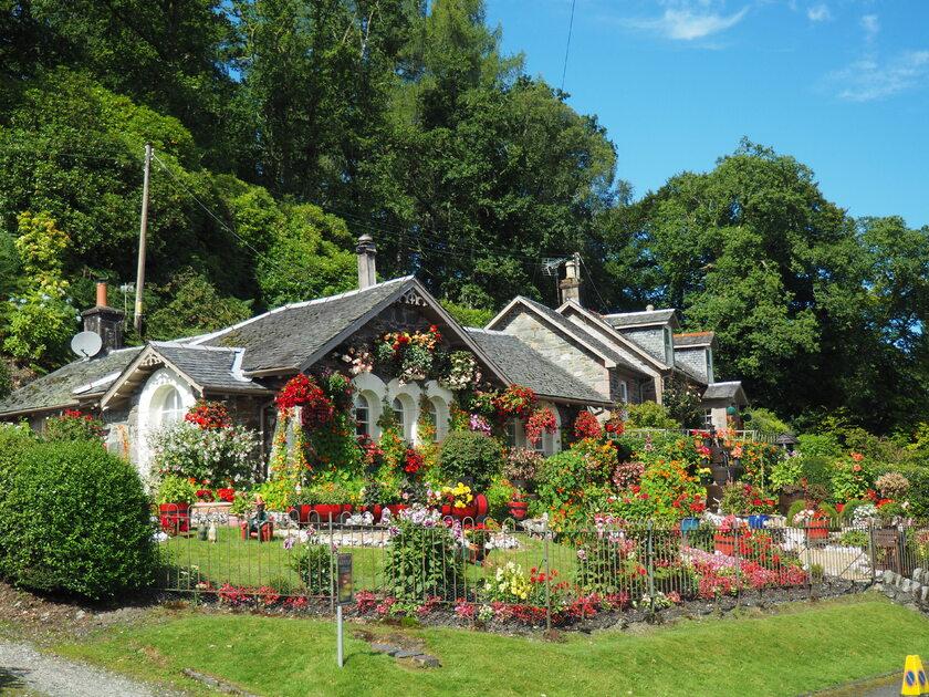 Ogród, zdjęcie ilustracyjne