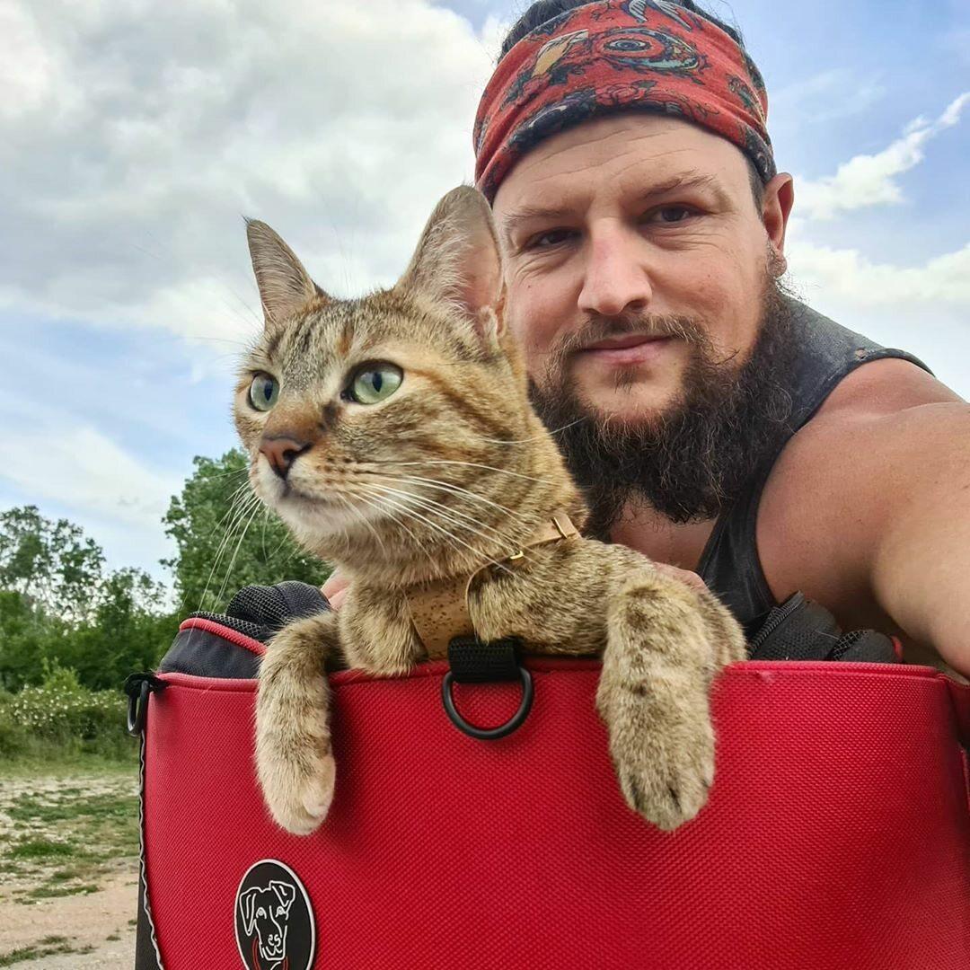 Dean podróżuje z kotką