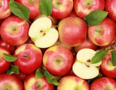 Myjesz jabłka pod kranem i wycierasz w ubranie? Naukowcy znaleźli domowy...