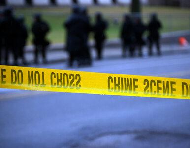 Strzelanina w szkole w USA. Nie żyje pięć osób
