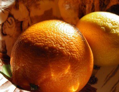 Pomarańcza - więcej niż owoc