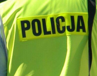 Policjanci przejęli 82 kg liści tytoniu