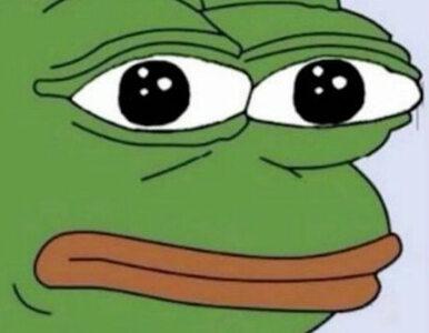 """Bohater memów symbolem nienawiści? Smutna żaba Pepe trafiła na """"czarną..."""