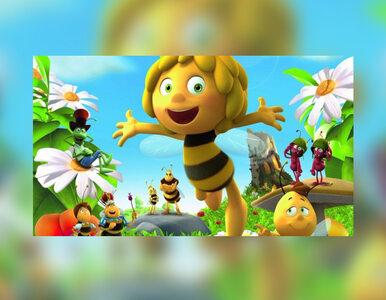 """Penis w jednym z odcinków """"Pszczółki Mai"""". Studio przyznaje: To..."""