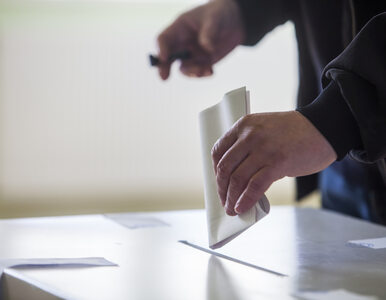 """""""Referendum może być jak Ice Bucket Challenge"""""""