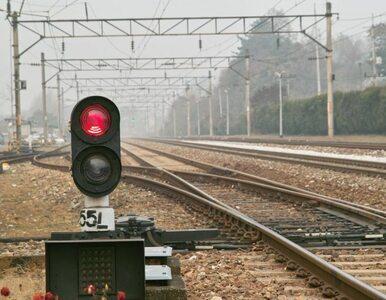 Małopolska wyda 132 miliony na nowe pociągi. Będzie klimatyzacja, Wi-Fi...