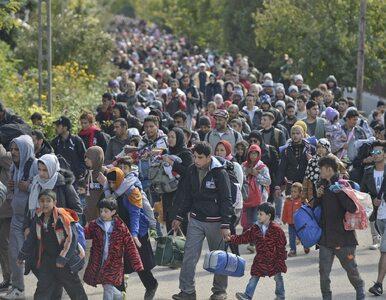 Węgry. Jest termin referendum w sprawie uchodźców