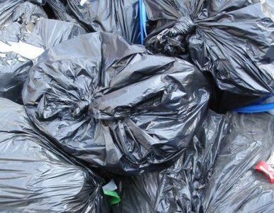 We Wrocławiu mieszkańcy czekali 24 dni na wywóz śmieci