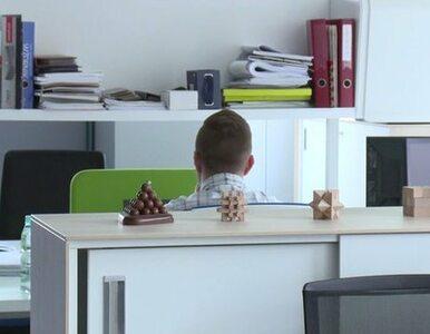 Odpowiednia aranżacja biura poprawi wydajność pracowników
