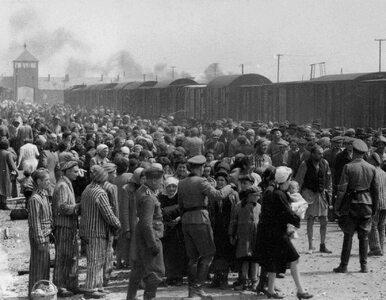 Literatura negująca Holokaust w sklepach Amazon. Yad Vashem apeluje o...