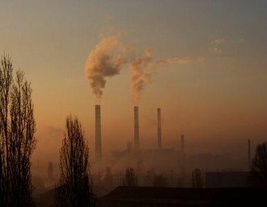 Europejczycy trują się powietrzem. Polacy pyłami