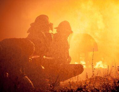 Płonie odlewnia cynku. Na miejscu 11 zastępów straży