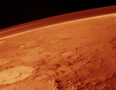 NASA odkryła organizmy, które mogą żyć na Marsie?