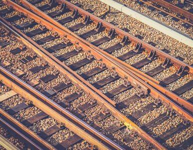 Pięć ofiar wypadku na przejeździe kolejowym. Pojawiły się zdjęcia z...