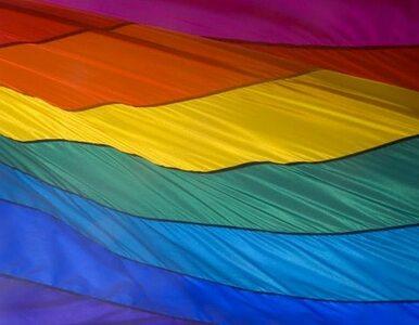 Syn senatora: geje zarażają przez uścisk dłoni
