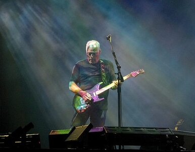 "Pink Floyd: album ""Endless River"" będzie ostatni"