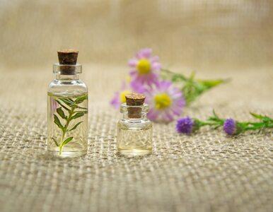 5 korzyści zdrowotnych olejku eterycznego z kadzidłowca