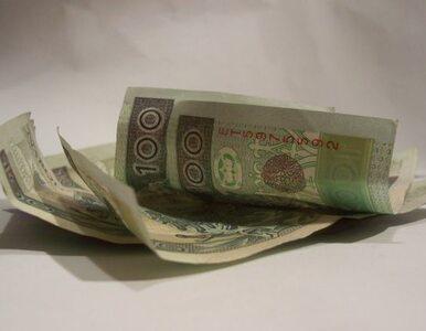 Zastępca Rostowskiego: oszczędzajmy, ale bez przesady