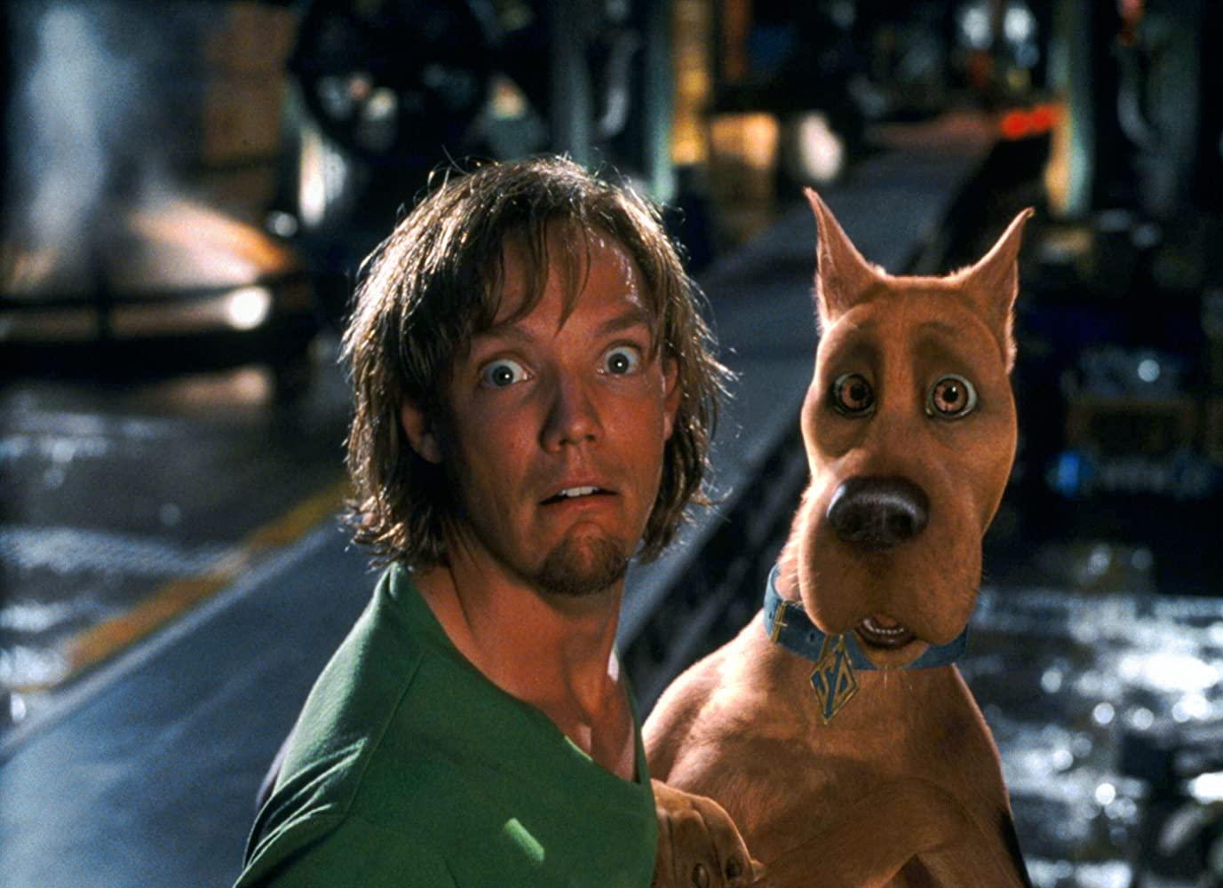 Ten pies to oczywiście: