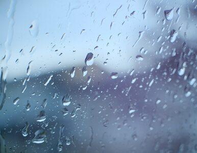 Wtorek z przelotnym deszczem w części kraju. Na termometrach do 21℃