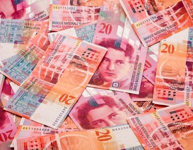 Kłótnia o kredyty we frankach. Palikot do Petru: Pan jest oszustem