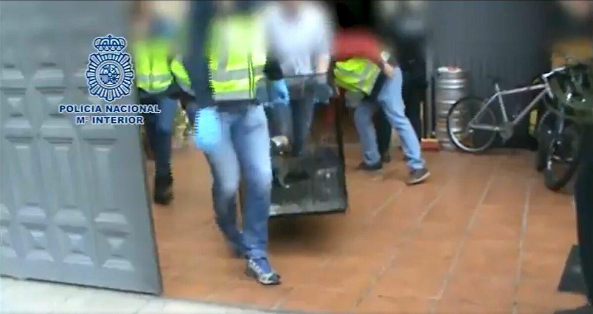 Policyjna akcja w nielegalnej hodowli psów