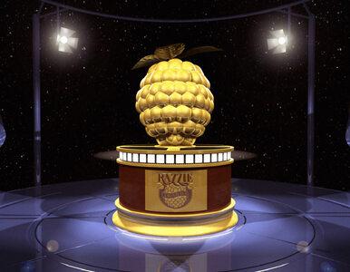 Złote Maliny 2016 – pięć nagród Greya