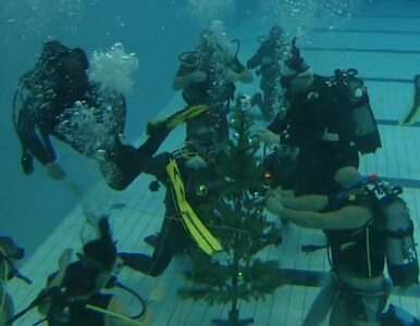 Nurkowie z Poznania ubrali choinkę. Pod wodą