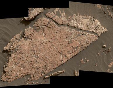 Błoto na Marsie? Curiosity dokonał kolejnego przełomowego odkrycia