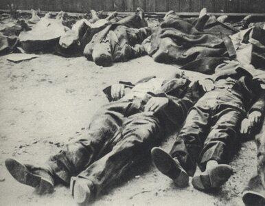 Komorowski na cmentarzu wolskim: Tu są ofiary prawdziwego ludobójstwa