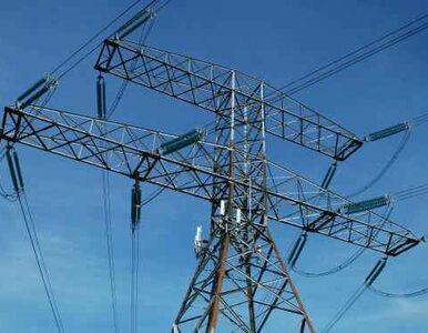 PGE nie połączy się z Energą - sąd nie pozwolił