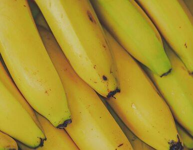 Korzyści zdrowotne herbaty bananowej, które cię zaskoczą