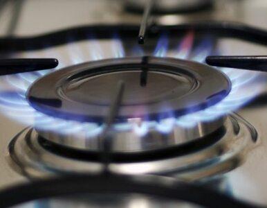Umowa podpisana. Ukraina kupi gaz ze Słowacji